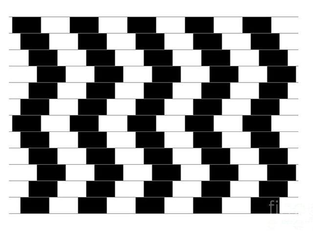 Kako su orijentisane linije?